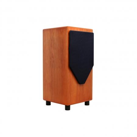 Loa MJ Acoustics Pro 100 Mk2