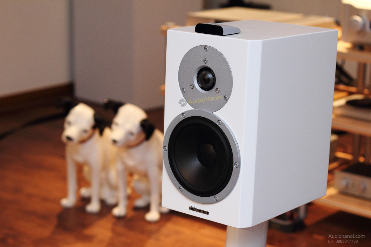 Loa Dynaudio XEO 4 chat